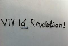 Hvilken revolution ?