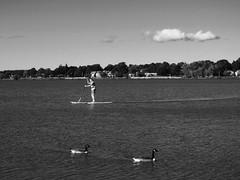 Wakefield, Massachusetts (better-days) Tags: boston streetphotography wakefield canons90
