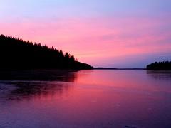 Sunset in November (jane_skagern) Tags: 100comments flickrandroidapp:filter=none natureswedennovembersunsetredicelakenärke