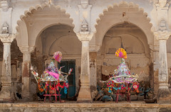Gujarat : Becchhraji #4 (foto_morgana) Tags: india asia religion belief hinduism gujarat bachuchharayitemple becchraji
