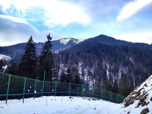 Горы возле Синевира