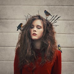 the home in her hair (Abigail Lane Nelson) Tags: red art home birds hair sticks nest fine surreal nelson lane abigail concept conceptual twigs storytelling