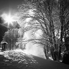 il silenzio della neve #1 (* onda *) Tags: