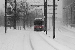 On the snow