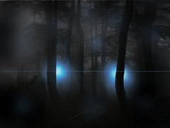 Photoshop'd Movie Poster (Thacia Stirling Photography) Tags: trees students fog night forest photoshop lights photo glare foggy bored spooky easy tutorial classes cs6