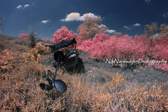 Alone again - Autumn IR (Nik Najmuddin Nik Ariff) Tags: autumn landscapes alone loneliness infrared stranded tokbali poknik poknikphoto autumninfrared niknajmuddin