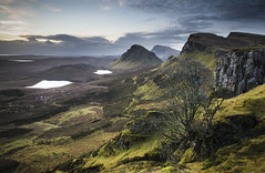 Quiraing, Trotternish Ridge, Skye (Belhaven2011) Tags: winter light tree skye landscape dawn scotland ancient nikon isleofskye rid