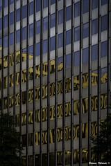 Office Building (Bernai Velarde-Light Seeker) Tags: windows usa reflection building glass arlington buildings virginia dc washington office edificio officebuilding crystalcity oficinas bernaivelarde