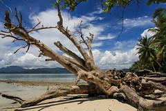 Pantai Ketapang | Lampung