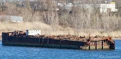 Barge or Ship sans stern? (TugSailor) Tags: abandoned marine maritime tug kills derelict boneyard wrecks newyorkharbor arthurkill libertyservice