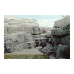 )) (sm0r0ms) Tags: paris color film nature analog 35mm landscape kodak olympus artificial portra om1 160 2014 autaut