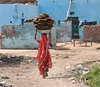 Going Home (The Spirit of the World) Tags: road woman india house home countryside local dailylife sari rajasthan womanwalking thegalaxy womaninsari rememberthatmomentlevel4 rememberthatmomentlevel1 rememberthatmomentlevel2 rememberthatmomentlevel3