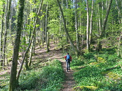 Hike naar Llyn Elsi