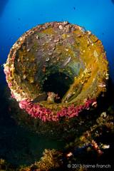 agujero negro (II) (Jaime Franch) Tags: diving formentera buceo baleares laplataforma tokinaatx107dxfisheyeaf1017mmf3545 mediterraneo visemanafotografiasubmarinaformentera