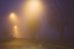 The Mist Of The Night (StewieVoodoo) Tags: winter italy mist milan fog night nikon italia milano nebbia inverno notte preset d5100