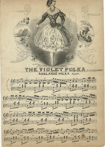 Violet polka and Adelaide polka