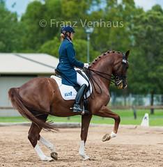 150207_Clarendon_8970.jpg (FranzVenhaus) Tags: horses sydney australia riding newsouthwales athletes aus equestrian supporters riders officials dressage spectatorsvolunteers