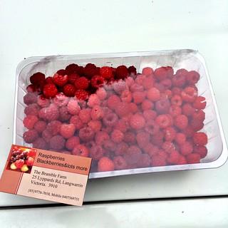 Our raspberry haul.