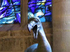 Dodo by Nick Bibby (pefkosmad) Tags: uk summer england sculpture bird art public modern cathedral modernart exhibition gloucestershire gloucester dodo extinct gloucestercathedral nickbibby crucible2 crucibleexhibition
