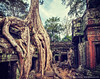 Ancient ruins and tree roots, Ta Prohm temple, Angkor, Cambodia (Dmitry Rukhlenko Travel Photography) Tags: door old travel color colour tree tourism archaeology monument stone wall vintage asian religious temple crossprocessed ancient ruins asia cambodia doors cambodian khmer stones famous religion hipster ruin roots entrance landmark angkorwat tourist architectural retro doorway faded portal exit traveling siemreap angkor wat taprohm portals oldfashioned indochina angkorthom travelled traveled placeofworship religiousbuilding retrostyled