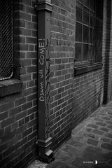 Fitzroy/Collingwood 16-05-16 (Divided Creative) Tags: city urban blackandwhite bw streetart art outdoors death graffiti collingwood pipe fitzroy australia melbourne victoria drain drainpipe