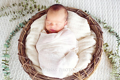 baby W (scoopsafav) Tags: boy portrait people baby beauty face portraits soft pretty babies basket wrap newborn cuddly leighduenasphotography