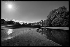 _8B27300 copy (mingthein) Tags: blackandwhite bw monochrome garden landscape scotland nikon d availablelight ming cosmic speculation pce 2435 onn d810 thein protract photohorologer pce2435d mingtheincom