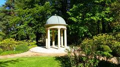Pavillon (guydarit) Tags: park pavilion usedom heringsdorf