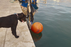 DSCF6522 1 (salutaryKs) Tags: sea slovenia slo izola