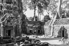 cambodia_angkor_wat_IMG_0398.jpg (dvillaret) Tags: travel blackandwhite temple ancient ruins asia cambodia buddha buddhist angkorwat sevenwonders commercialphotography khymer corporatephotography birminghamphotography photographerbirmingham photographersbirmingham photographersinbirmingham exposurephoto