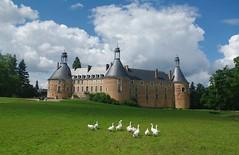 Château de SAINT-FARGEAU - Yonne. (jmsatto) Tags: chäteau stfargeau puisaye oies parc nuages yonne