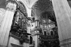 IMG_8654Bx (kanizfotolio) Tags: blackandwhite dog church canon lens eos sadness spain europe cathedral beggar granada sacred kits stray 500d granadacathedral