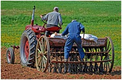415 copy (cora.anne) Tags: crop oats mccormick oldtractor seeding