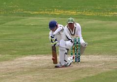 Bute ccc 152-8 Kilmarnock 156-2 (ufopilot) Tags: club cricket ccc kilmarnock bute rothesay