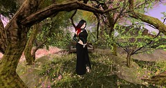 Latest Look (Ima Peccable) Tags: secondlife hobbits shire elvessecondliferegiontheshiresecondlifeparceltheshireahomelysliceofmiddleearthsecondlifex161secondlifey196secondlifez22