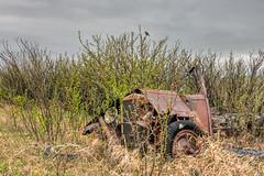 Rusty Robin (Wayne Stadler Photography) Tags: bird cars abandoned robin rust farm wildlife watching rusty weathered trucks aged discarded derelict automobiles photomatix rustographer travelvehicles