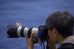 Photography Distractions (swong95765) Tags: camera man guy water canon concentration photo focus funny shoot humor