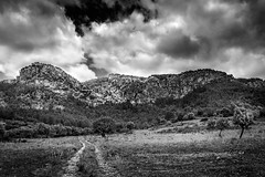 Mallorca Mountain Landscape (King Grecko) Tags: travel sky blackandwhite bw mountain mountains tree clouds contrast canon landscape outdoors photography countryside vanishingpoint spain europe moody path dramatic atmosphere rockface journey asphalt sierranevada drama range mallorca scenics majorca lightroom mountainrange roadtonowhere meditteranean balearicislands tramuntana wildernessarea cloudsky traveldestinations 2470f28 nonurbanscene gettingawayfromitall leefilters nd3stop 5dmk3 conceptsandideas canoneos5dmk3