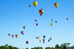 Up We Go (matthewkaz) Tags: trees sky balloons airplane michigan balloon hotairballoon hotairballoons howell balloonfest 2016 michiganchallenge