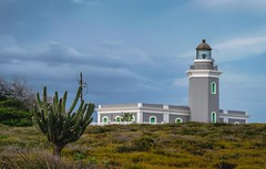 Cabo Rojo Lighthouse (vagrantyouth) Tags: longexposure blue cactus lighthouse color nature landscape puerto photography photo nikon rico pr caribbean instagramapp