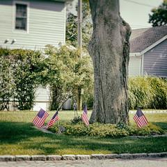 Flags (bratli) Tags: flags us tree greenport longisland northfork