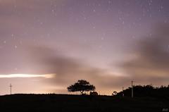 Chuva de estrelas (Paulo Nunes Jr.) Tags: fazenda pedro sojoo cidadesnordestinas 2016 alagoinhas junho