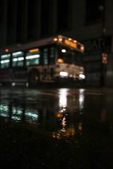 Midnight Ride  #Detroit #Bus #Reflection #Lookup #StreetPhotography #NightPhotography #NightShot #DepthOfField #Bokeh #Bokehlicious #Rain #Puddle #Urban #UrbanExplorer #Urbex #DetroitMichigan #Michigan (kallyone) Tags: nightphotography urban reflection bus rain puddle nightshot bokeh michigan detroit streetphotography lookup depthoffield urbex detroitmichigan urbanexplorer bokehlicious
