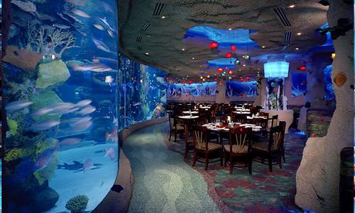 Best Seafood Restaurant In Downtown Dubai