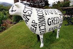 Think for food (Cumberland Patriot) Tags: food for sheep painted think go cumbria trust keswick calvert ewe cumbrian herdwick goherdwick