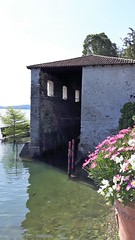 isole borromee (16) (giangian239) Tags: lago acqua blu giardino maggiore albero verde prato statua monumento isola isole borromee madre bella superiore panorama paesaggio lungolago