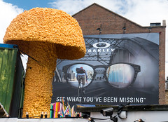 Christiaan Nagel - See What You've Been Missing! (cocabeenslinky) Tags: street city uk england urban orange streetart building london art mushroom sunglasses lumix photography graffiti see big missing artist photos united capital large kingdom youve been east panasonic what christiaan toadstool graff nagel oakley eastend artiste dmcg6 cocabeenslinky
