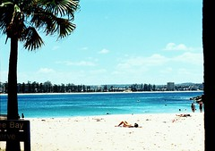 (kodacolorframes) Tags: ocean blue sea summer film beach 50mm xpro lomography pacific manly grain sydney australia palm chrome 100 tanning chinonce4s