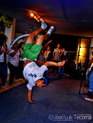 Break Dance (jluis_0881) Tags: parque wallpaper animal de photography photographer jose acapulco ensenada luis wallpapers fotografia diseo fondo jos pantalla desing papagayo fotografo guerrero vazquez fotografias tecorral