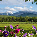 Late spring snowfall in the High Peaks. Photo: Larry Master,Lake Placid, NY